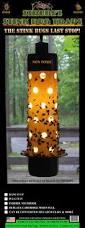 Outdoor Bug Lights by Best 25 Stink Bug Trap Ideas On Pinterest Stink Bug Repellent