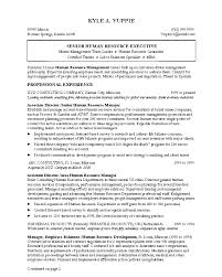 resume on customer service good best resume service 73 in modern resume template with best
