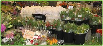 flower delivery san antonio san antonio flower company san antonio florist flowers in san