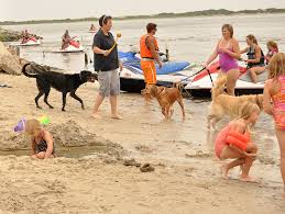 fun for all at castaways rv resort and campground ocean city md