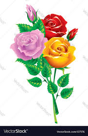 multicolored roses bouquet of multicolored roses royalty free vector image