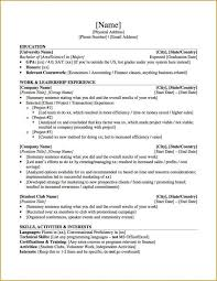 Application Resume Template Professional Resume For Graduate Best Resume Collection