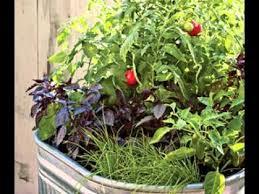 creative small vegetable garden ideas youtube