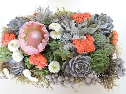 succulent arrangements succulent protea arrangement san diego only succulents