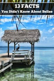 best 25 belize islands ideas on pinterest belize travel belize