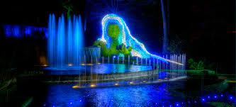 garden lights atlanta botanical garden