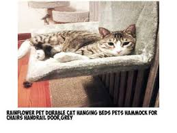 10 best cat bed hammock to buy review 2017 youtube