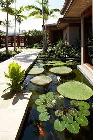 Backyard Fish Pond Ideas Innovative Ideas Fish Pond Design Amazing Koi Ponds Garden Ideas
