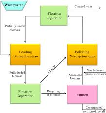 processes free full text flotation of biological materials html