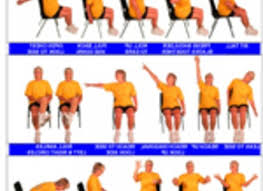 Chair Exercises For Seniors Unique Eames Office Furniture Bitcoinsemarang Co