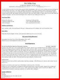 Resume Executive Summary Examples by Executive Summary Writing