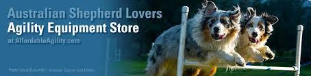 australian shepherd lovers dog agility equipment