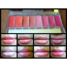 Wardah Lip Di Pasaran wardah lip palette lip palette 10gr elevenia