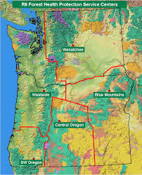 map of oregon i 5 region 6 insects diseases