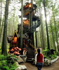 Simple Backyard Tree Houses by Best 25 Tree Houses Ideas On Pinterest Tree House Designs