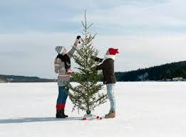 the christmas tree dilemma real or fake