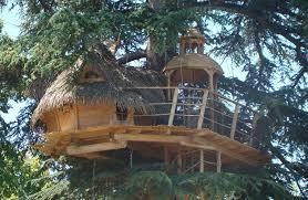 chambres dans les arbres dormir dans une cabane dans les arbres sur un arbre perché