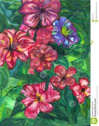 watercolor painting garden flowers stock illustration image