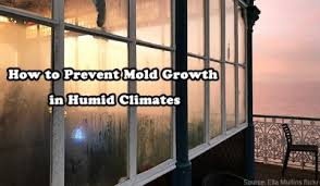 How To Stop Mold In Basement by How To Prevent Mold Growth In Humid Climates