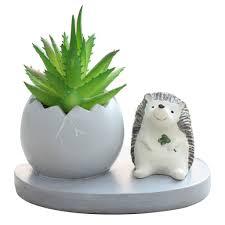 cute hedgehog with egg resin succulent pot mybageecha