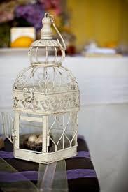 Bird Cage Decor Show Me Pictures Of Your Birdcage Decorations Centerpieces