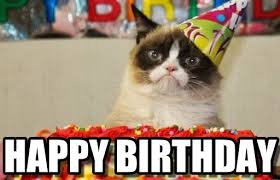Cat Happy Birthday Meme - today is the day for the epic cat meme thread happy birthday