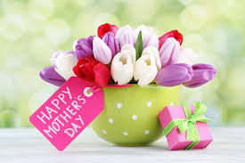 celebrate genius moms with these mother u0027s day ideas