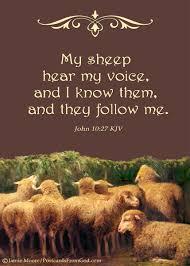 thanksgiving bible verses kjv jesus is