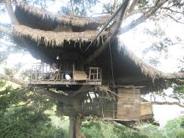 tour a real treehouse peak inside the canopy dwellings at laos