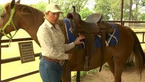 horse saddle how to saddle a horse western style youtube