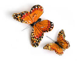 butterfly hair pair of monarch butterfly hair by crown and