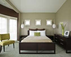 Bedroom Living Room Combo Design Ideas Marvellous Brown Bedroom Ideas Cool Color For Living Room Walls