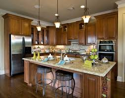rustic kitchen designs brown wall paint color the eclectic