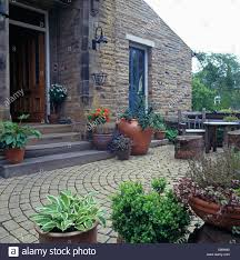 Small Shrubs For Front Yard - pots of perennials and small shrubs on circular paved patio in