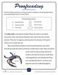 Editing And Proofreading Worksheets Grammar Brush Up For Fifth Graders Education Com