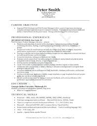 Software Testing Resume Format For Experienced Software Experience Resume Sample Web Developer Resume Example