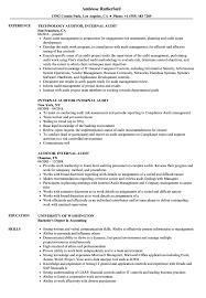Internal Resume Auditor Internal Audit Resume Samples Velvet Jobs
