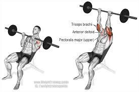 chest exercises google
