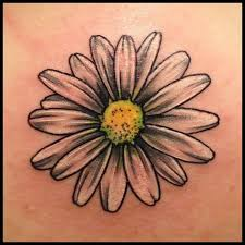Flower Of Images - best 25 april birth flowers ideas only on pinterest daisy