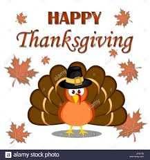 Thanksgiving Bird Beautiful Turkey Bird Happy Thanksgiving Celebration