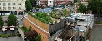 secret gardens goodlifereport com