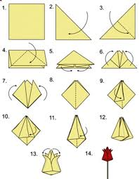 tulip origami origami instructions