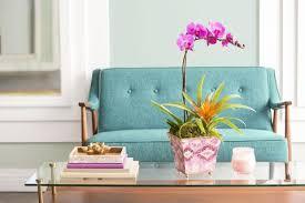 Best Plants For Bathrooms Best Indoor Plants For Bathrooms Interior Design Inspo Tree