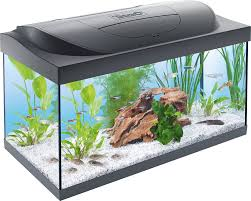 tetra aquarium starter line tank 54 l amazon co uk pet supplies