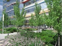 Urban Gardening Philadelphia - greenroofs com projects chop children u0027s hospital of