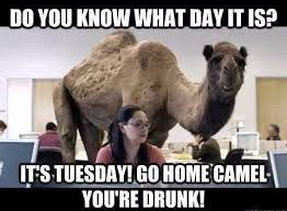 Tuesday Meme - funny tuesday memes 17 pics funny goblin