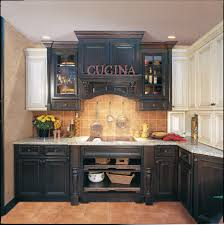 paint kitchen cabinets ideas house cool black painted cabinet door tags black cabinet paint