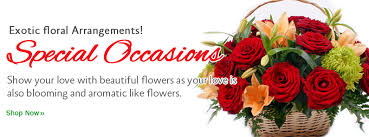 online flowers buy flowers online online flowers delivery send flowers online