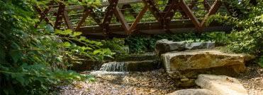 Botanical Gardens South Carolina The South Carolina Botanical Garden Is A Place Where Nature And