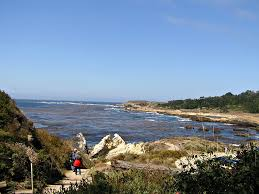 Point Lobos State Reserve Map by Point Lobos State Reserve Anythingispossibletravel